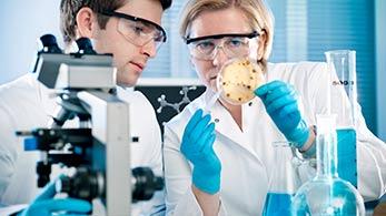 badania-laboratoryjne-drobiu